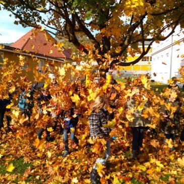 Jesenski žur|Herbsttreiben